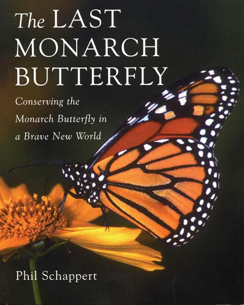 Monarch Butterflies - An Overview