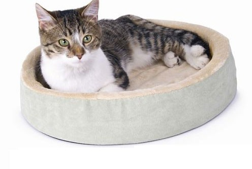 K&H 3703 Thermo-Kitty Cuddle Up - Sage - 16 Inch Diameter