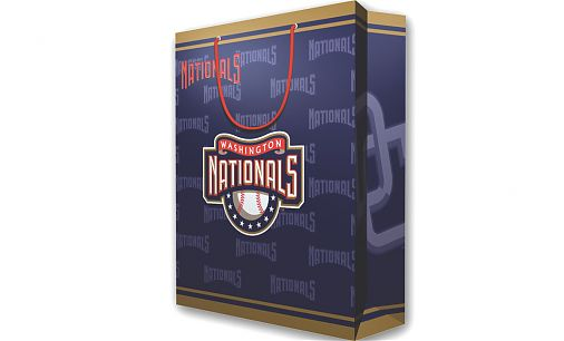 2 MLB Large Gift Bag - Washington Nationals