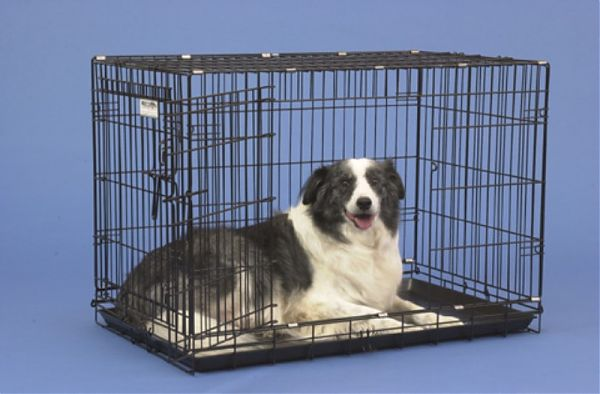 Precision Pet 1125-GRC5000BLK 2-Door Black Great Crate 5000 - 42 x 28 x 31 Inch