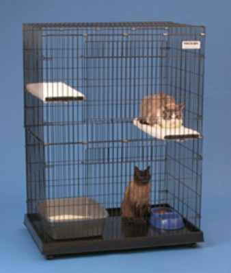 Precision Pet 1720-17025 Kitty Condo With Plastic Base- Large - 48 x 24 x 36 Inch