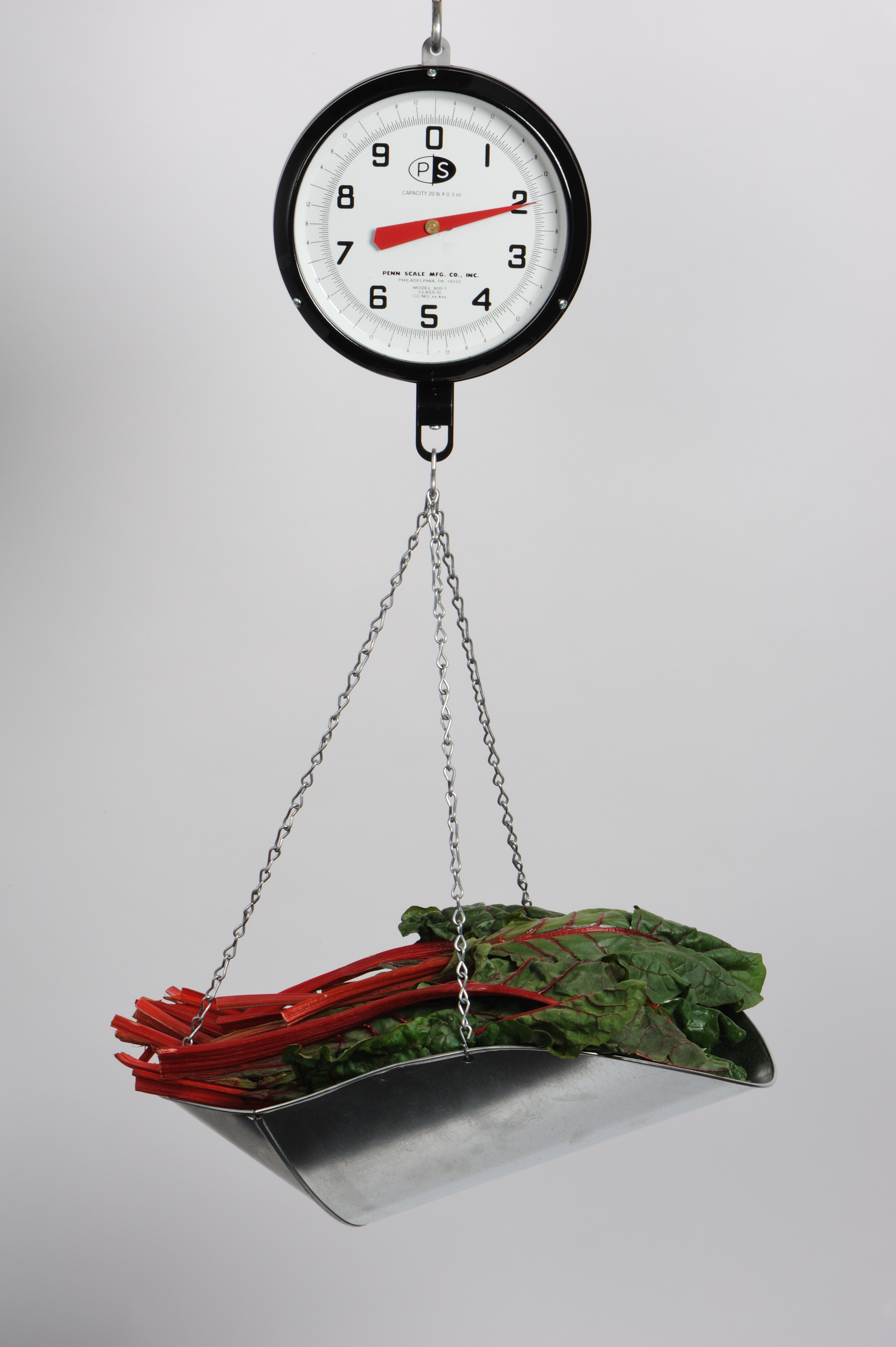 Penn Scale 820 VGD 20 Pound 8 inch Hanging Scale with Vegetable Scoop Glass and Double Dial