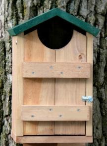 Looker Cedar Screech Owl House- Green House LOOK008