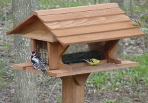 Looker Super Feeder Bird Cedar Super Feeder