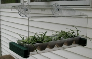 Looker WF-Greenhouse-Feeder Bird Feeder Greenhouse LOOK100