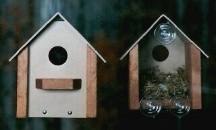 Looker Window House Watch The Grow Bird Window House LOOK103