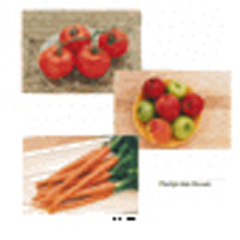 STAGES LEARNING MATERIALS SLM153 FRUITS & VEGETABLES POSTER SET SE OF 14