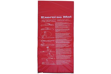 SUNNY NO. 011 Foam Padded Exercise Mat