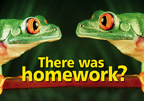 TREND ENTERPRISES INC. T-A67119 POSTER THERE WAS HOMEWORK 13 X 19