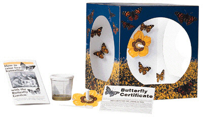 INSECT LORE ILP1010 BUTTERFLY GARDEN