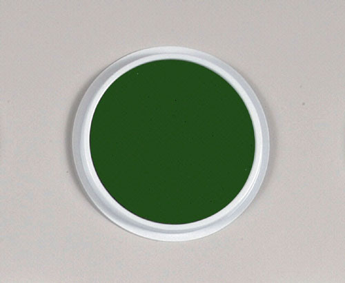CENTER ENTERPRISES CE-6603 JUMBO CIRCULAR WASHABLE PADS GREEN-SINGLE