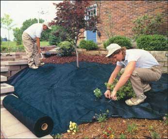 Dewitt 4 Feet x250 Feet  Pro 5 Barrier 5oz Fabric