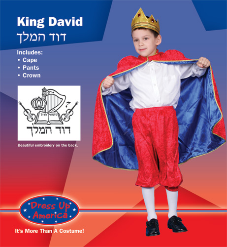 Deluxe King David Costume Set Large 12-14 234-L