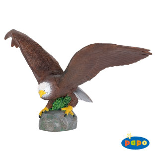 Papo 50030 Eagle Wild Animals Pack of 5 HOT198
