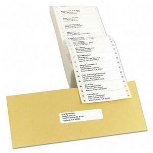 Avery Dennison Address Label 3.5 Inch x 0.93 Inch Carrier Size  4.25 Inch 5000 Label Address Label 4013