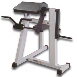 Multisports PROM-BTM Pro ROM Series Bicep-Tricep Machine