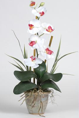 Nearly Natural 1016-WH Single Stem Phalaenopsis Silk Orchid Arrangement NN1016-WH