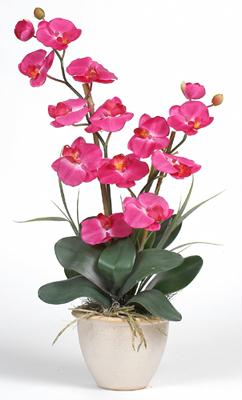Nearly Natural 1026-BU Double Stem Phalaenopsis Silk Orchid Arrangement