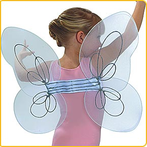 Fairy Costume - Fairy Princess Birthday Party Wings