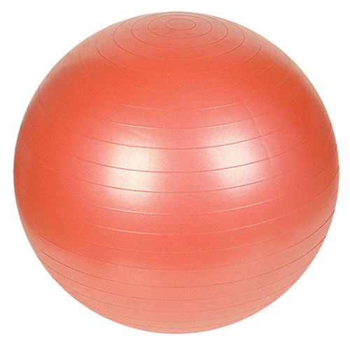 Sunny NO  055 Anti-Burst Gym Ball-55