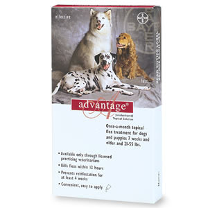 Image of Advantage RED-55-4 Advantage - For Dogs And Puppies 21-55 Lb