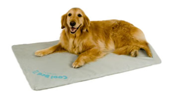 K&H Manufacturing KH1720-III Cool Bed III Thermoregulating Pet Bed Large 32 x 44 Inch