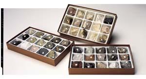 Hubbard Scientific 2231 Sedimentary Rock Collection