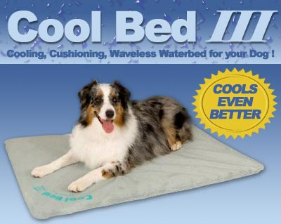 K&H Manufacturing KH1710-III Cool Bed III Thermoregulating Pet Bed Medium 22 x 32 Inch