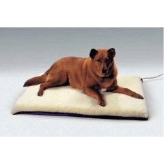 K&H Manufacturing KH4023 K&H Manufacturing Ortho Thermo-Bed 27 X 37 Inches With Green Bottom