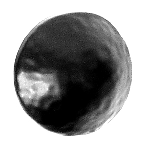 Acorn CL1BP Round Decorative Clavos - Black