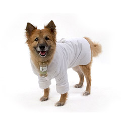 Robe - Cain And Able CA1053L Dog Robe- Large