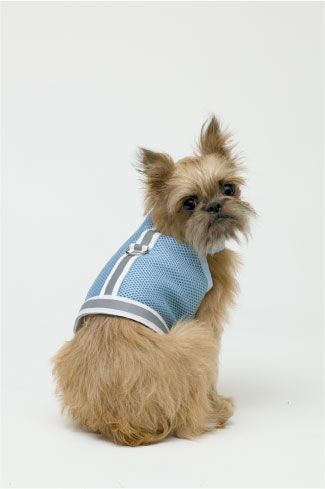 Reflective Vests - Doggles DOHAVMTC-04 Harness Vest - Reflective Mesh Blue - Teacup
