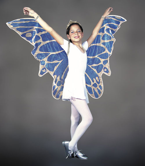 Fairy Costume - Costumes For All Occasions MR153000 Wings Childs Fairy