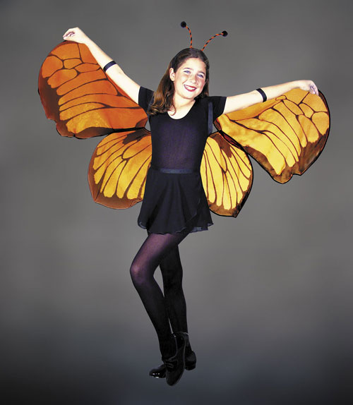 Costumes For All Occasions MR153001 Wings Childs Butterfly MRRS10875