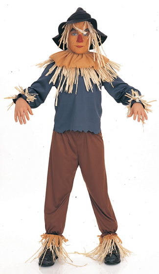 Scarecrow Costume - Costumes For All Occasions AF185LG Scarecrow Child Large