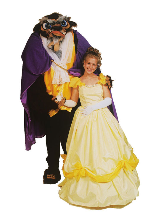 Costumes For All Occasions AL155AP Beast