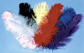 Costumes For All Occasions BB06YW Ostrich Plume Jumbo Yellow
