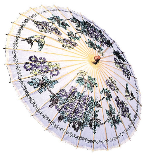 Costumes For All Occasions BB29 Parasol Paper
