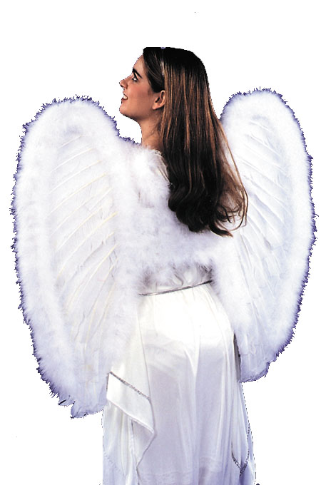 Costume Wings - Costumes For All Occasions BB453 Angel Wings Feather