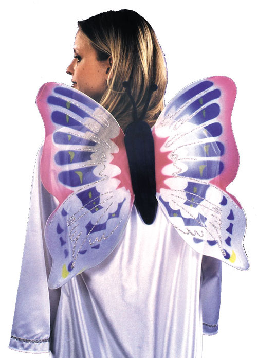 Costumes For All Occasions BB83 Wings Butterfly MRRS1851