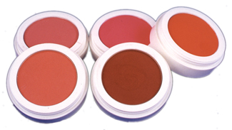 Costumes For All Occasions DD430 Celebre Blusher Bronzer MRRS3343