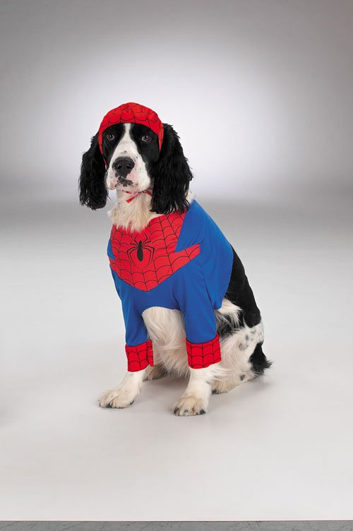 Costumes For All Occasions DG5800S Spiderman Dog sm MRRS4526