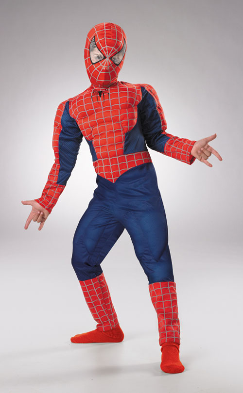Spiderman Costumes - Costumes For All Occasions DG6615G Spiderman Deluxe Child 10 To 12