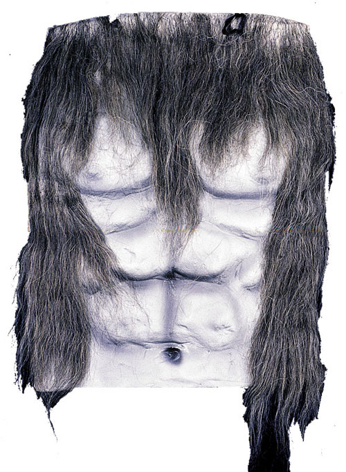 Werewolf Costume - Costumes For All Occasions DU982GY Werewolf Chest Grey