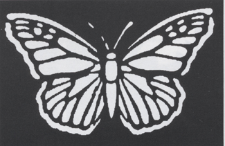 Butterfly Costume - Costumes For All Occasions FP59 Stencil Butterfly Brass