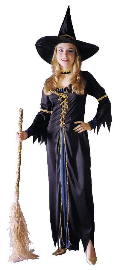 Renaissance Costume - Costumes For All Occasions FW1057 Renaissance Witch