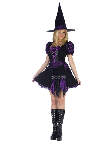 Witch Costume - Costumes For All Occasions FW120034ML Witch Purple Punk Adlt Medium Large