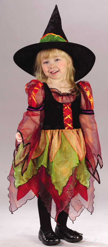 Witch Costumes - Costumes For All Occasions FW1560 Fairy Witch Toddler 3T 4T