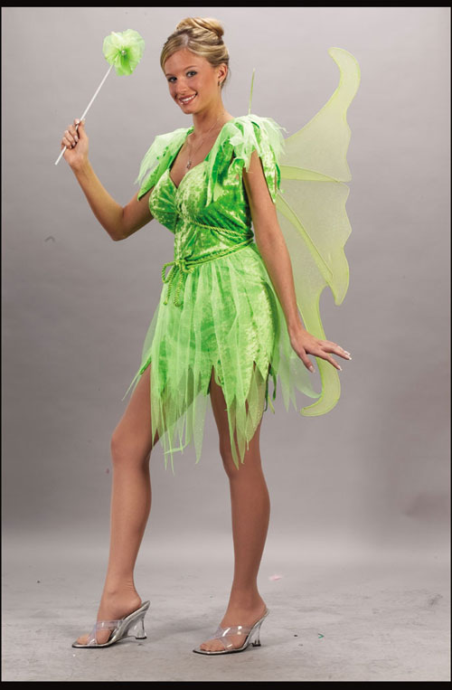 Fairy Costume - Costumes For All Occasions FW5113ML Neverland Fairy Adult Medium Large