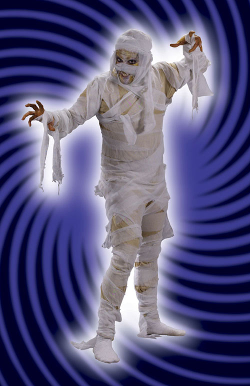 Costumes For All Occasions FW5418 Mummy Man